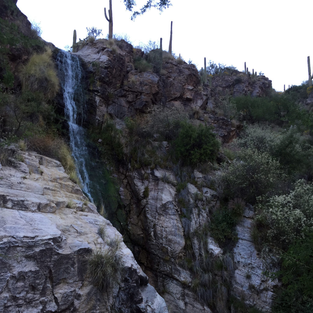 tucson_conference_waterfall
