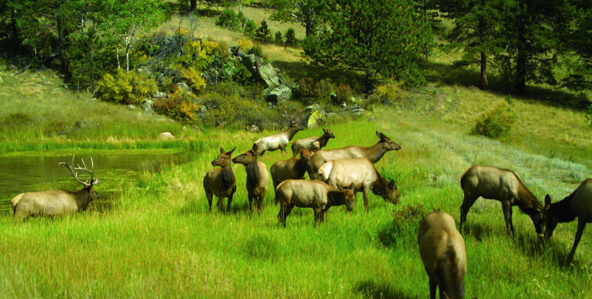 TW PK Ranch1 SATP