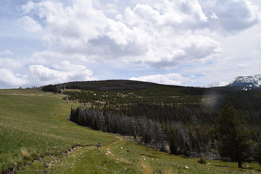 Prime and Wild Elk Habitat