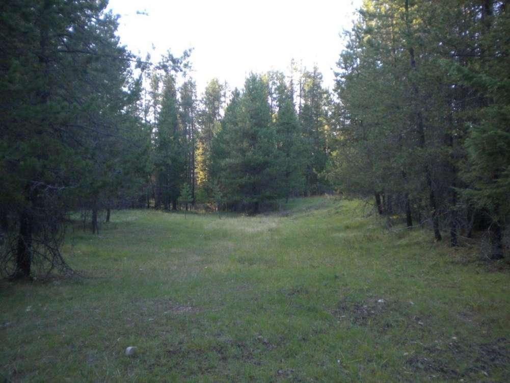 12 Peaks Ranch