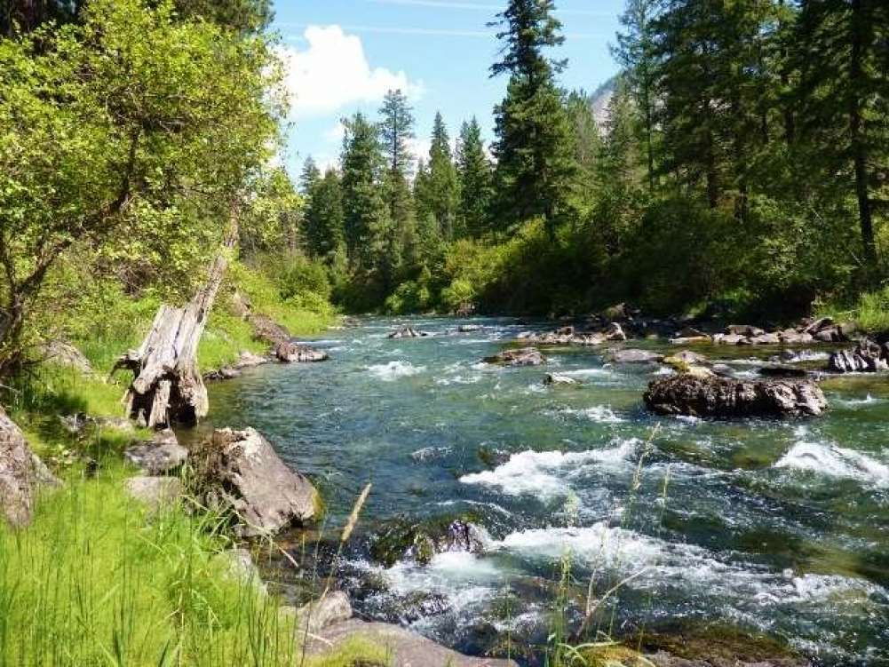Western Montana Thompson Riverfront Land Property Photograph