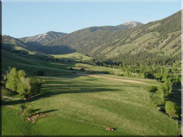 Elk Meadow Ranch Property Photograph