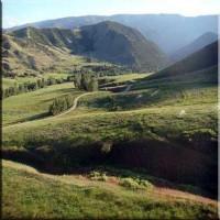 Aspen Ranch Property Photograph