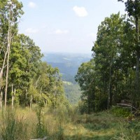731 Acres in the Heart of the Marcellus Shale Play Property Photograph