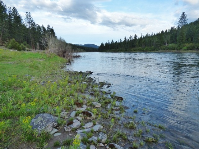 Western Montana Clark Fork Riverfront Land Property Photograph