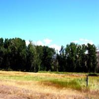 Salmon River Horse Property Property Photograph
