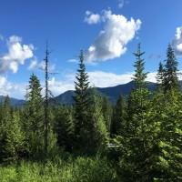 360 Views Property Photograph