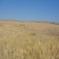 Marsh Valley lot Downey Idaho Property Photograph