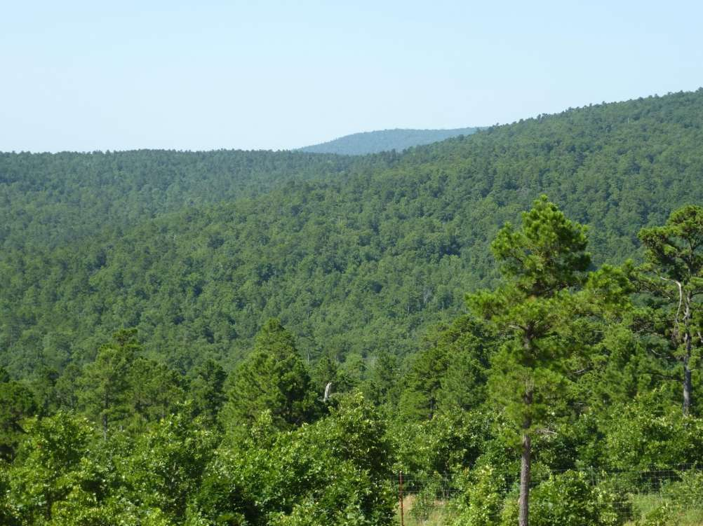 Mountain Fork Creek Ranch Property Photograph