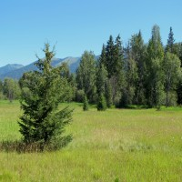 Wolf Creek Frontage on 10 Acres Property Photograph
