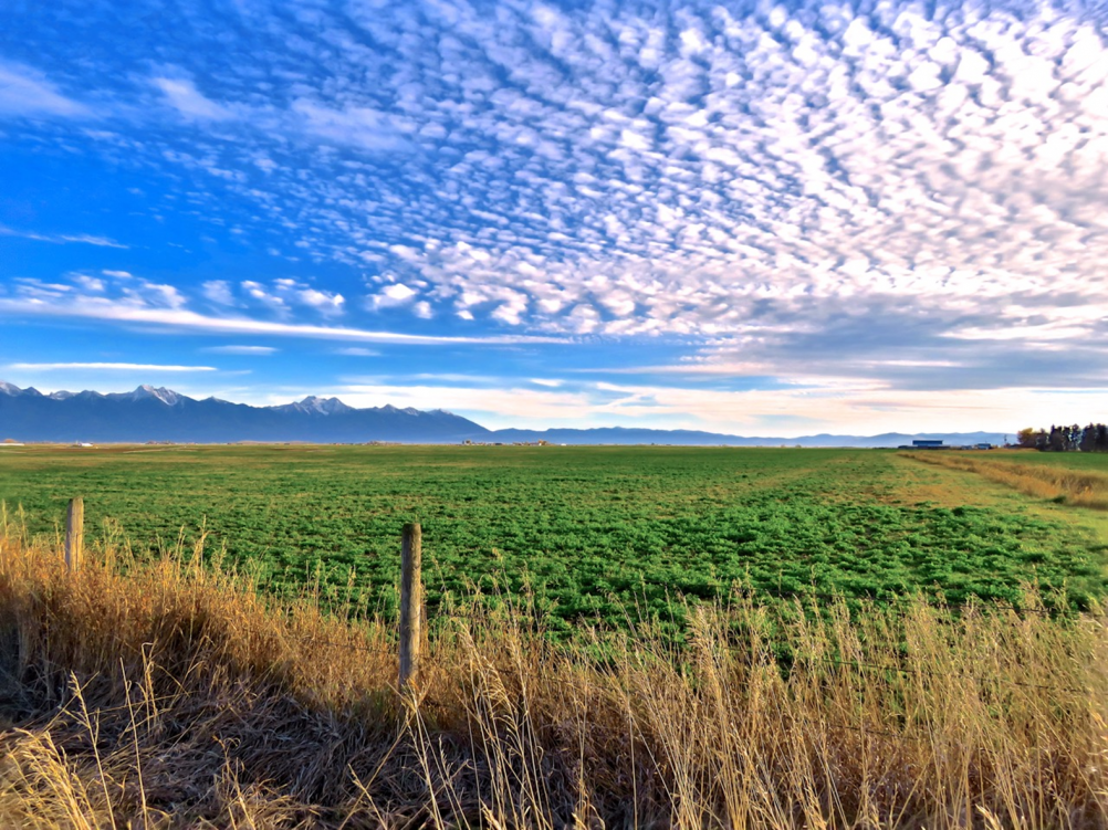 Lower Flathead River Drainage Farm