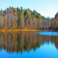 Abernathy Lake Property Photograph