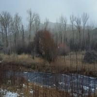 Challis Creek Frontage Property Property Photograph