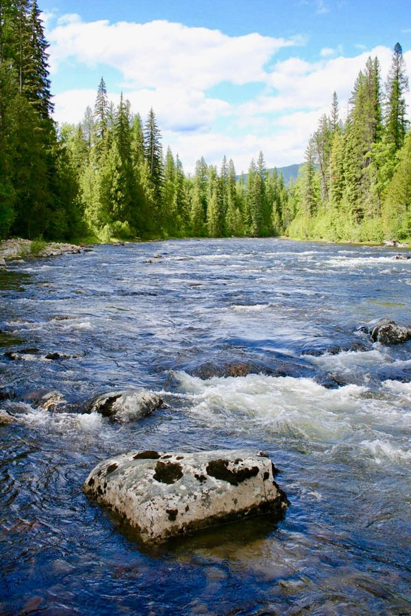 25.95 Acres on the Yaak River Property Photograph