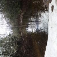 Lost Lake Acreage Property Photograph