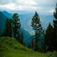 Private Mountain View Acreage - Close to Missoula Property Photograph