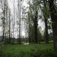 Parmenter Creek Ranch Property Photograph