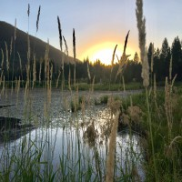 Sawtooth Sanctuary Property Photograph