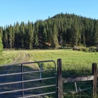 Ochoco Creek Ranch Property Photograph