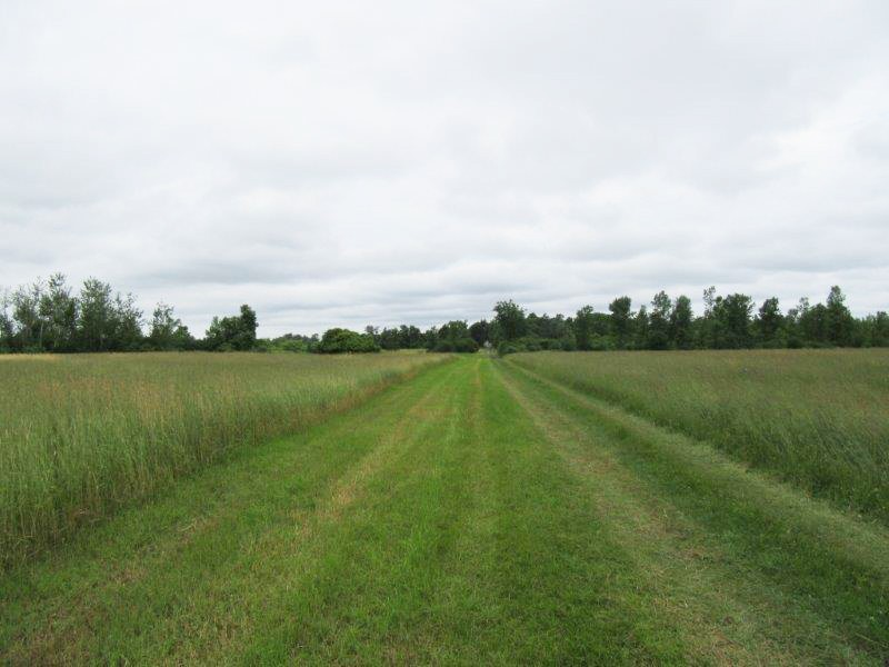 Tillable Farmland Hay Business in NY Property Photograph