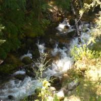 Fishing on Caribou Creek Property Photograph