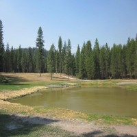 Stocked Trout Pond Property Photograph