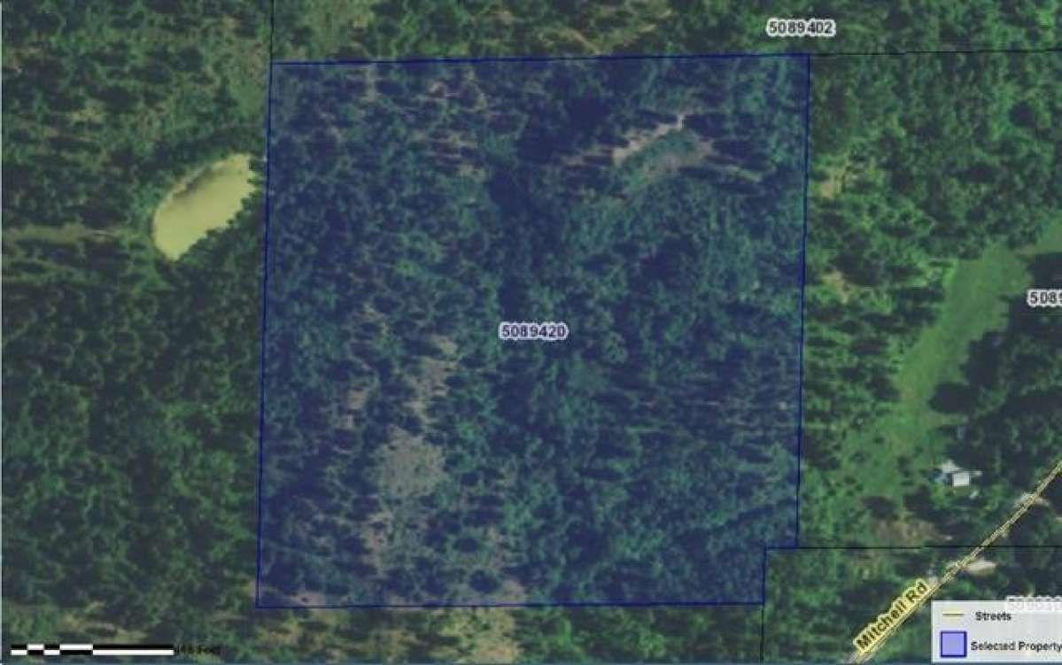 Nearly 40 AC near Northport WA Property Photograph