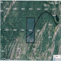 20 AC No Improvements Property Photograph