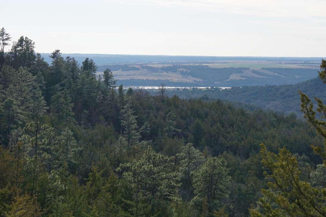 Twin Creek Wildlife Acreage Property Photograph