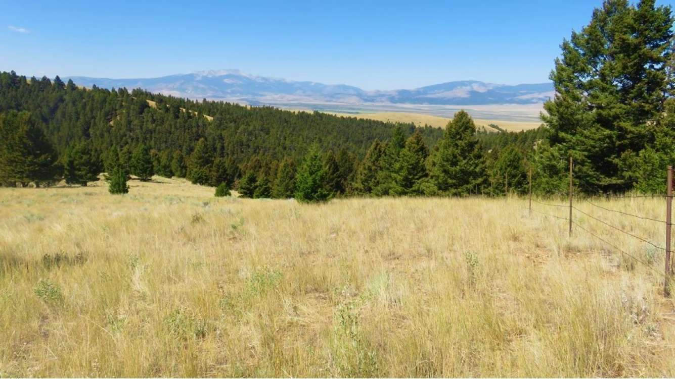 Perkins Gulch Ranch