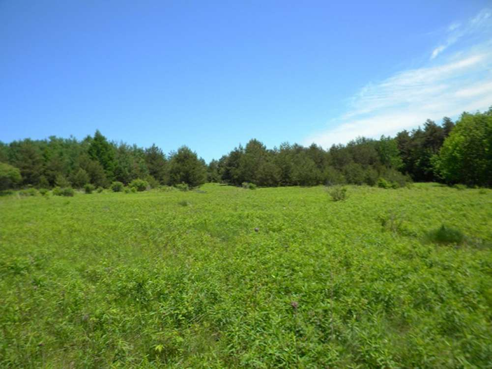 833 acres Farmland near Ithaca NY Finger Lakes Property Photograph