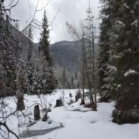 Clark Fork Solitude Property Photograph