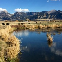 Trout Creek Ranch Property Photograph