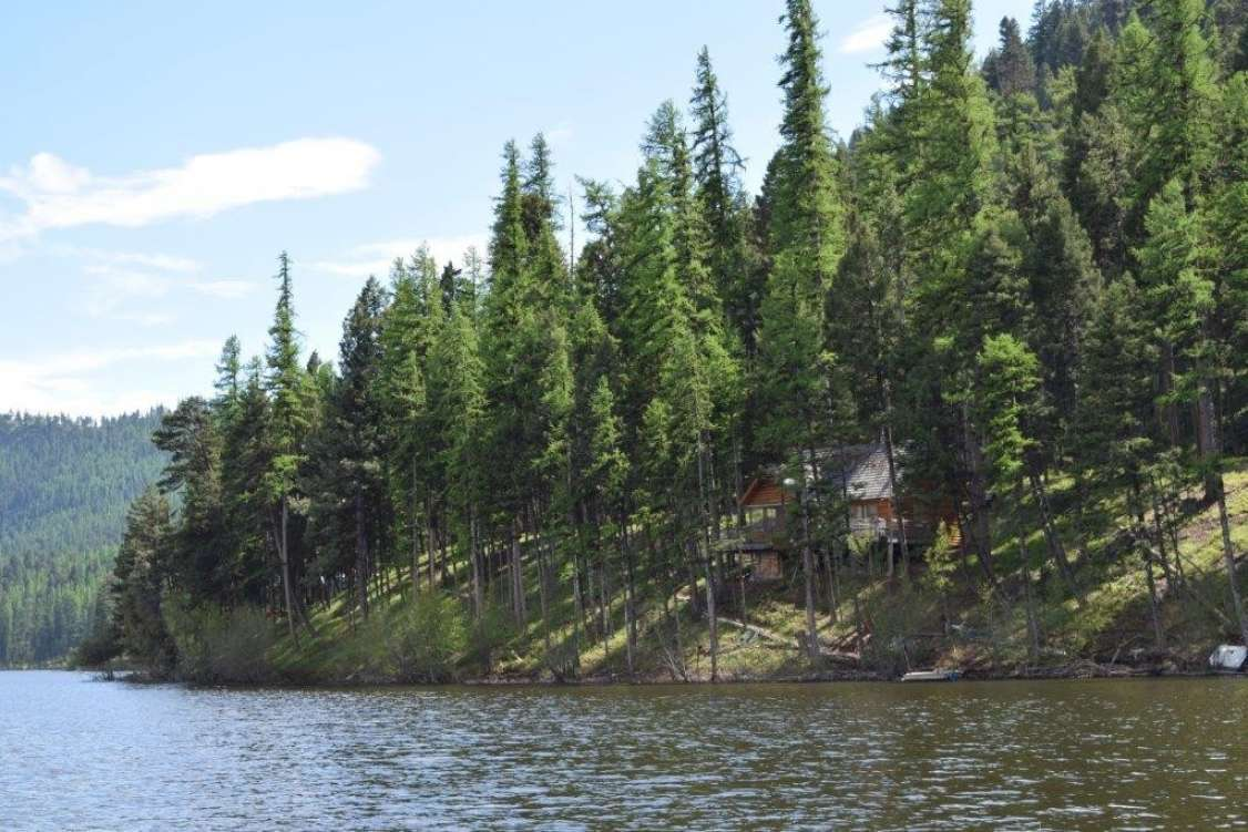 Amazing Lakefront Privacy on Salmon Lake Property Photograph
