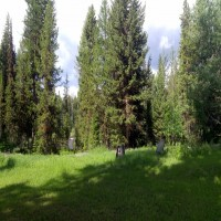 Private Swan River Cabin Property Photograph