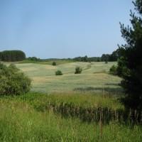 Cypress Hills Property Photograph