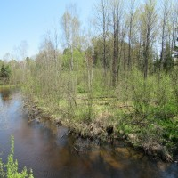Little Manistee River 16 Property Photograph
