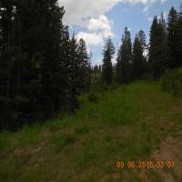 Elk Mountain Property Property Photograph