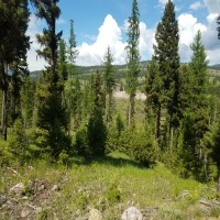 Magnificence at Many Rivers Property Photograph