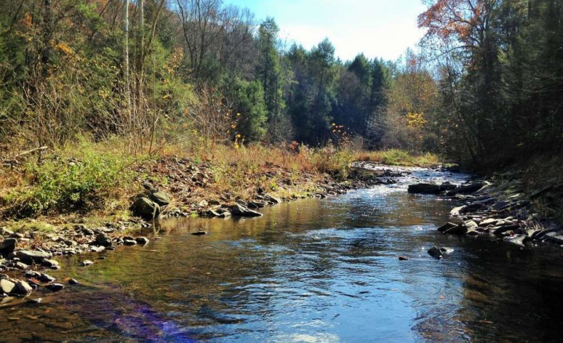 Wapwallopen Creek 250 Acre Waterfront Property