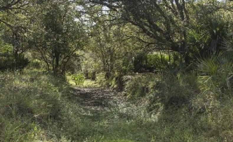 Kissimmee Prairie Ranch