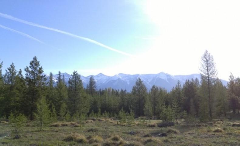 Elk Creek Preserve Lot 4