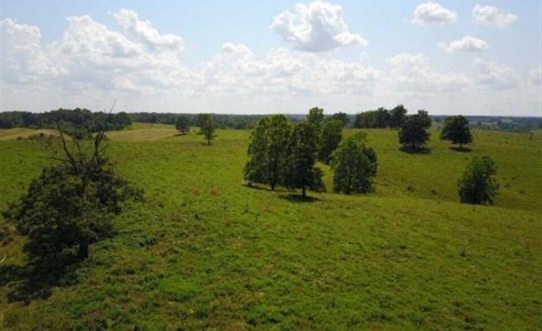Working Barry County Mo Cattle Ranch-2684 Continuous acres!