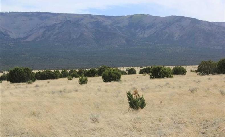 Las Tablas Ranch
