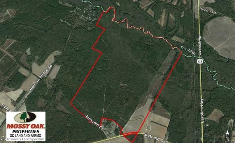 REDUCED! 605 Acres of Waterfront Hunting Land For Sale in Bamberg County SC!
