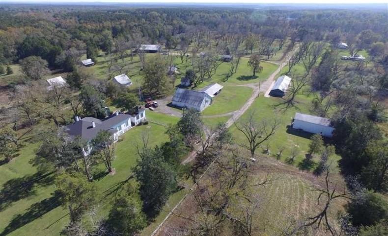 Old Springhill Plantation, 3,000 total acres