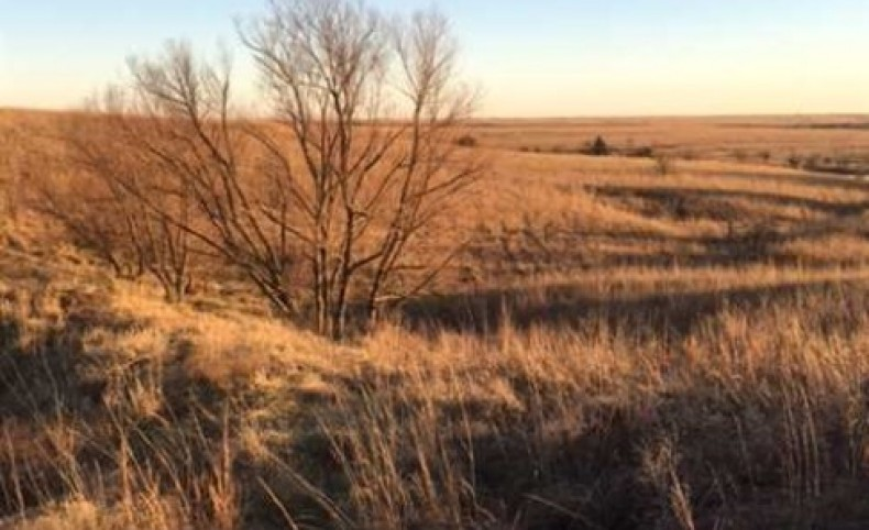 Land for Sale, Farms for Sale, Ranches for Sale, Acreage for Sale at