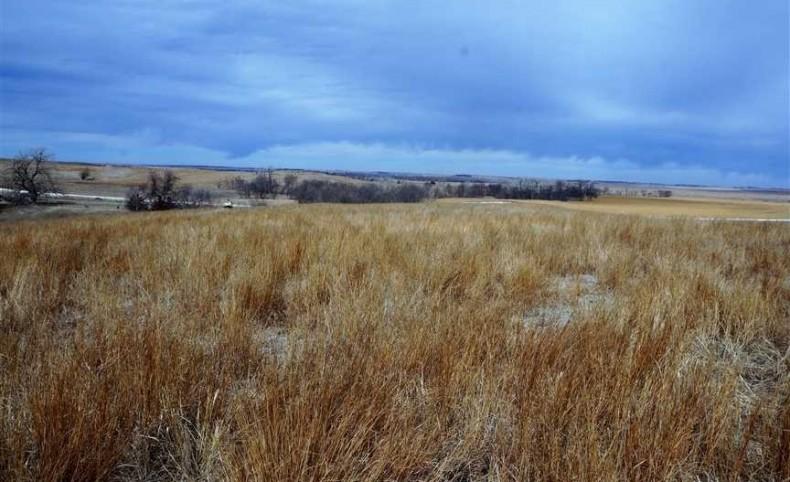 273 Acre Pasture Land North Central Kansas