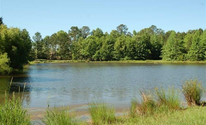 Outstanding Hunting with Great 4 Acre Fishing Lake....