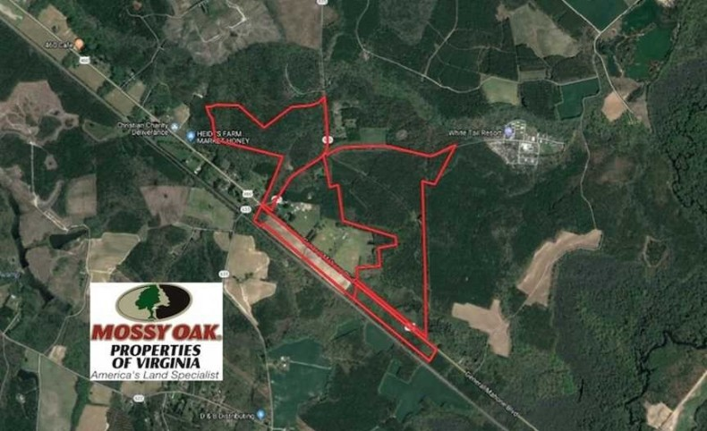272 Acres of Hunting and Investment Land For Sale in Southampton County VA!
